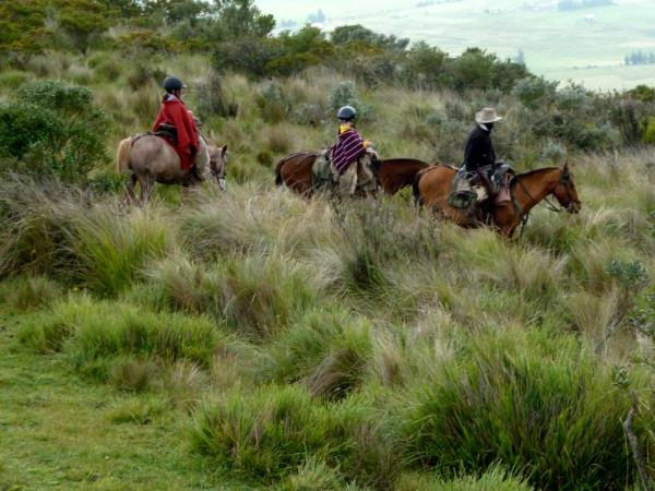 Family horseback riding in Ecuador
