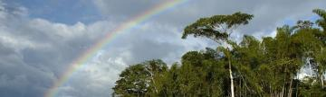 Huaorani Lodge rainbow