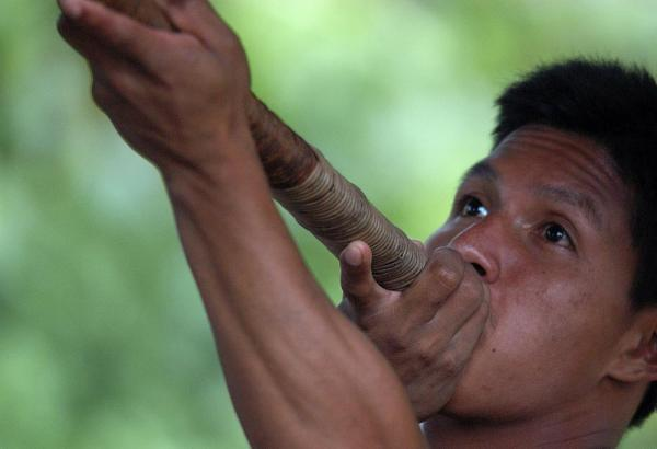 Blow darts are used for hunting in the Huaorani Community