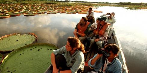 Boating by lily pads in Guyana