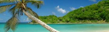 Wander white sand beaches on your Caribbean cruise