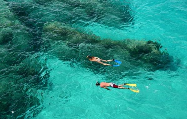 Snorkel the warm Caribbean waters on your small ship cruise