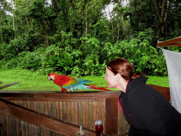 Lee with one of the chicos at TRC.  Really great TRC lets you get so up close and personal with these macaws.