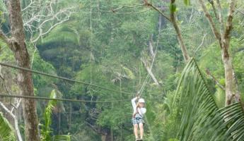Ziplining through the rainforest!