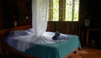 Room at Selva Bananito