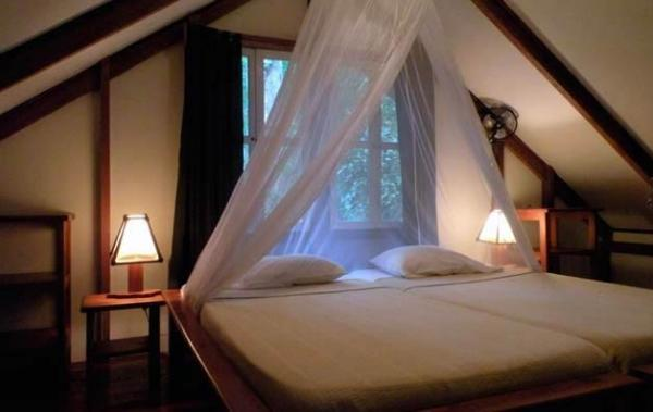Comfortable accommodations in the jungle bungalows