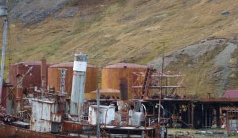 Grytviken: a strange beauty from an ugly past