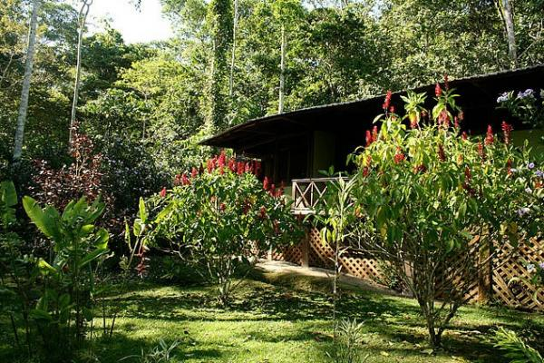 Lushly landscaped grounds, set on acres of private Amazon reserve