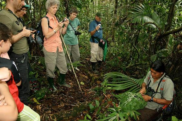 Your guide will teach you the secrets of the Amazon rainforest