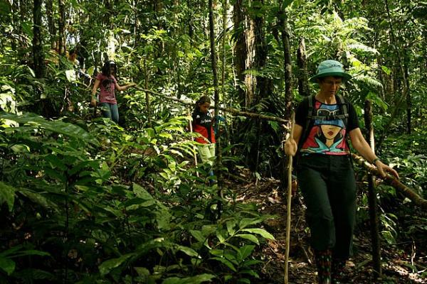 Hike nature trails, spot wildlife and more on your Amazon adventure