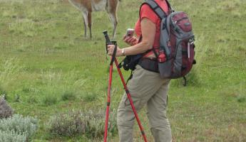 Margie and guanaco