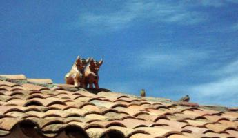 Los Toros from good luck on the rooftops