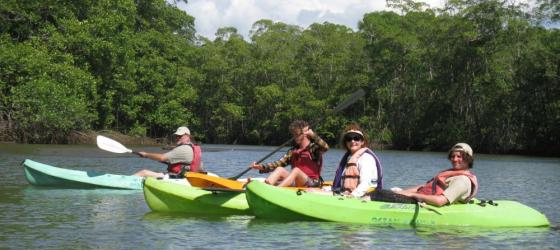 Kayaking at the Hatillo Mangroves