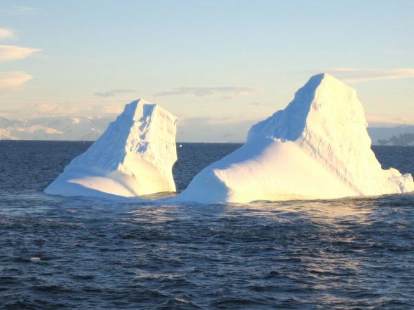 Icebergs near South Shetland Islands