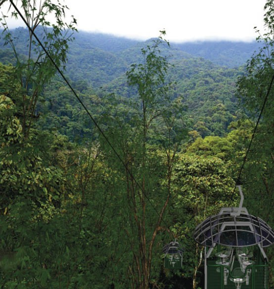 The aerial tram - or dendronautics - is an innoventive way to explore the canopy