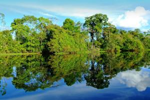 A lovely reflection off the Amazon River