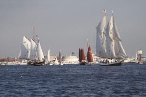 Sails in the harbor