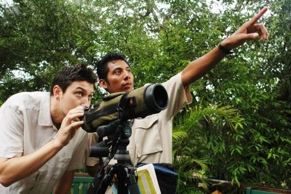 Scanning for tropical birds in the rainforest canopy