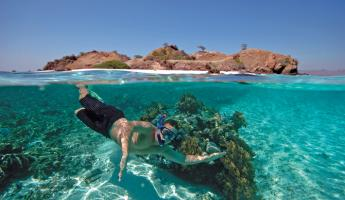 Snorkeling on a Sea Voyager cruise
