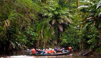 Venture into the Amazon on a Manatee river cruise