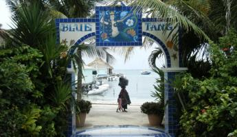 Entry to Blue Tang