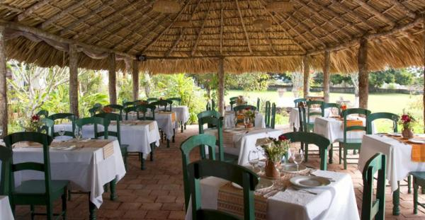 Restaurante Los Geranios serves local and international fare