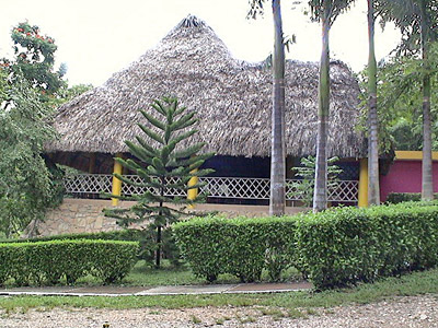 The dining palapa