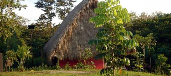 Welcome to the remote Las Guacamayas Ecologe