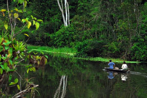 Canoeing down the Amazon