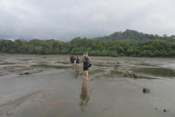 Crossing the mud flats on the Corcovado trekking trip