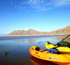 Sea kayak in Magdalena Bay