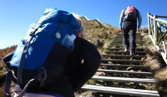 Up and up in Cajas National Park