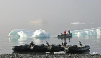 Zodiacs will transport you to shore for your Arctic explorations