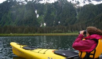 Watching the bear from the kayak