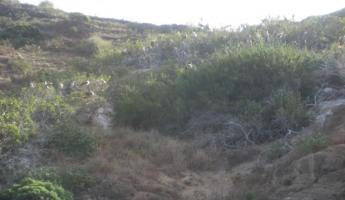 Hiking at Punta Pitt, San Cristobal