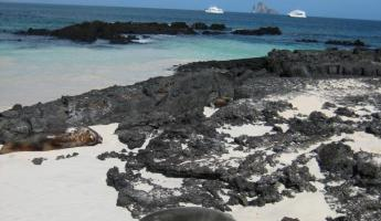 Beach time at Cerro Brujo. San Cristobal, Galapagos Islands.