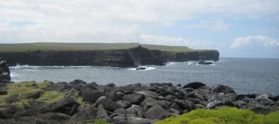 It reminded me of the Cliffs of Moher!