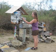 Checking the mail, Galapagos style