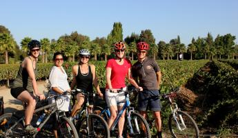 A group of bikers on a Chile wine tour