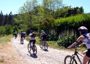 Enjoy a Bike & Wine Tour in the Santiago Region of Chile!