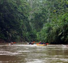 Kayaking the Amazon