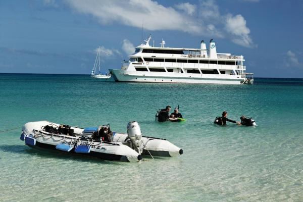 Explore the underwater world on your small ship cruise
