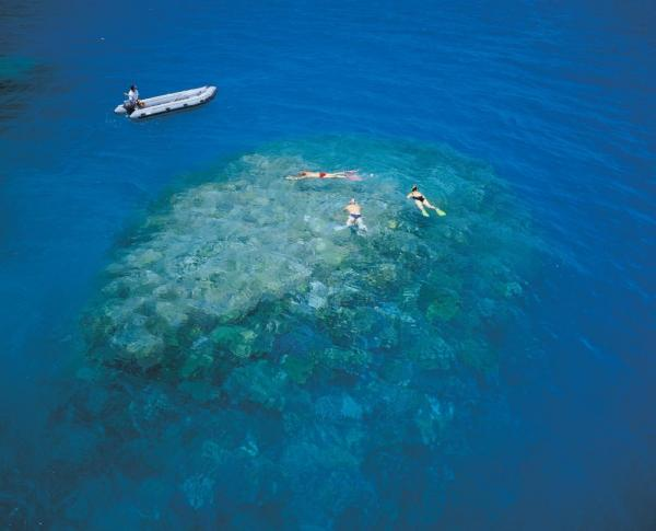 Snorkel at exclusive Great Barrier Reef sites