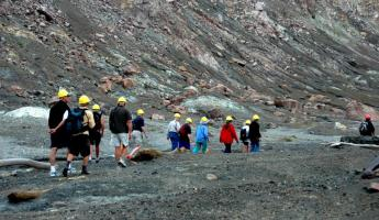 Explore the active volcano on White Island