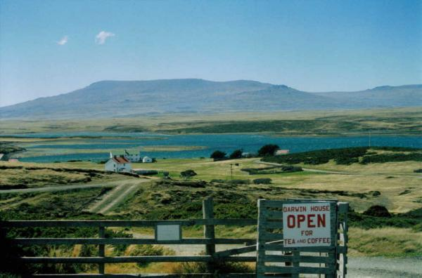 Wander the striking landscape of the islands during a Falklands tour