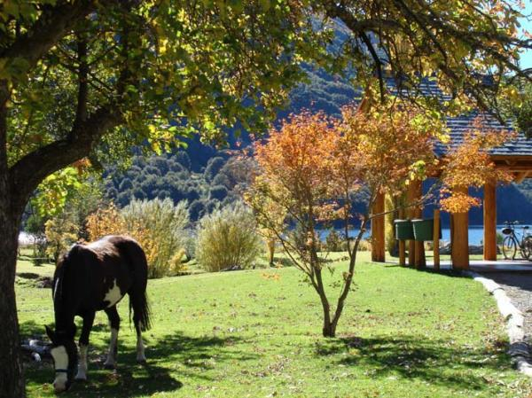 Estancia Peuma Hue is a pristine eco-resort and mountain lodge that embodies all the elements Patagonia has to offer