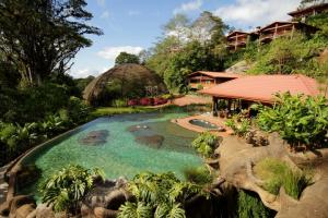Celebrate the natural wonders of the rainforest with a stay at the Peace Lodge