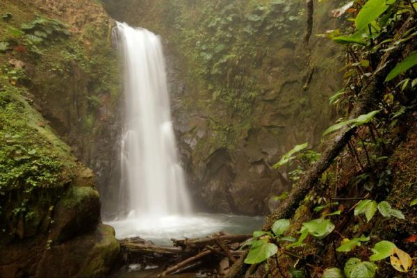 La Paz Waterfall Gardens features some of the most famous waterfalls in all of Costa Rica