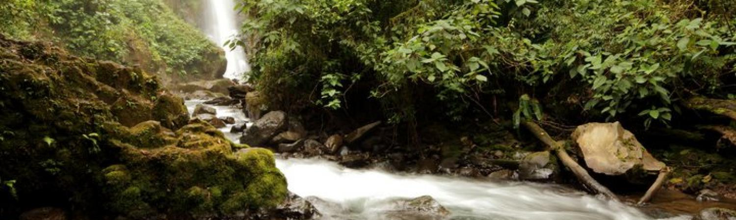 La Paz Waterfall Gardens in the most visited privately owned ecological attraction in Costa Rica