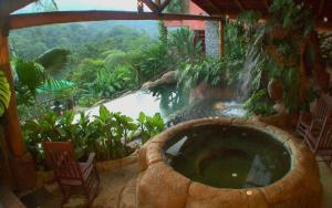Enjoy a hot soak overlooking the rainforest.